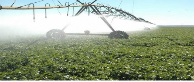 Avanço da agricultura na América Latina motiva expansão de investimentos em irrigação